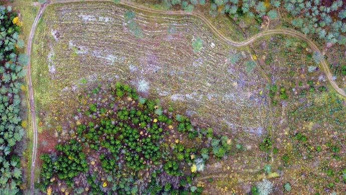 drooniga kaardistamine metsandus celsus